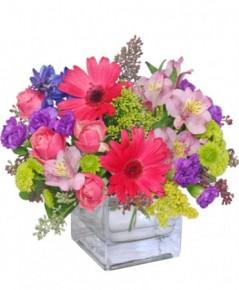 Gėlių puokščių pristatymas
